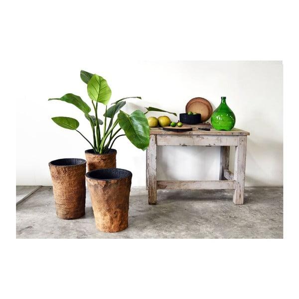 Palmový kvetináč Burn