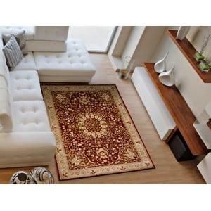 Koberec Universal Kashan, 160 × 230 cm