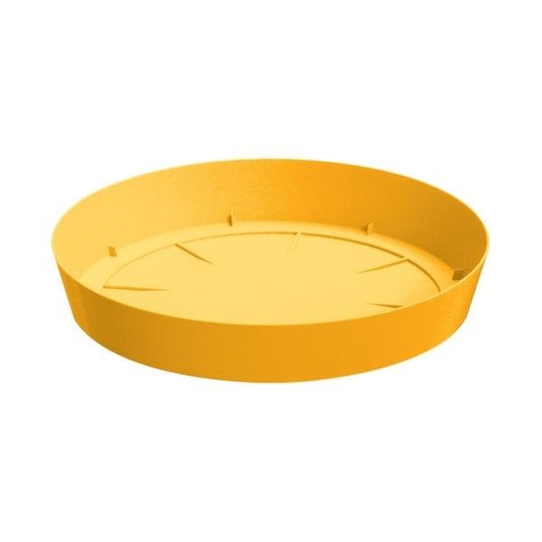 Sada kvetináča s miskou Colorino 15,8 cm, indická žltá