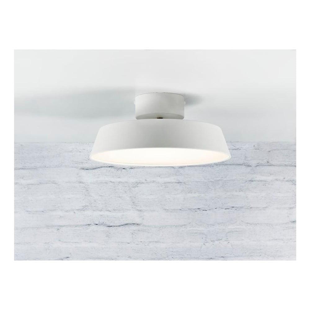 Biele stropné svetlo Nordlux Alba