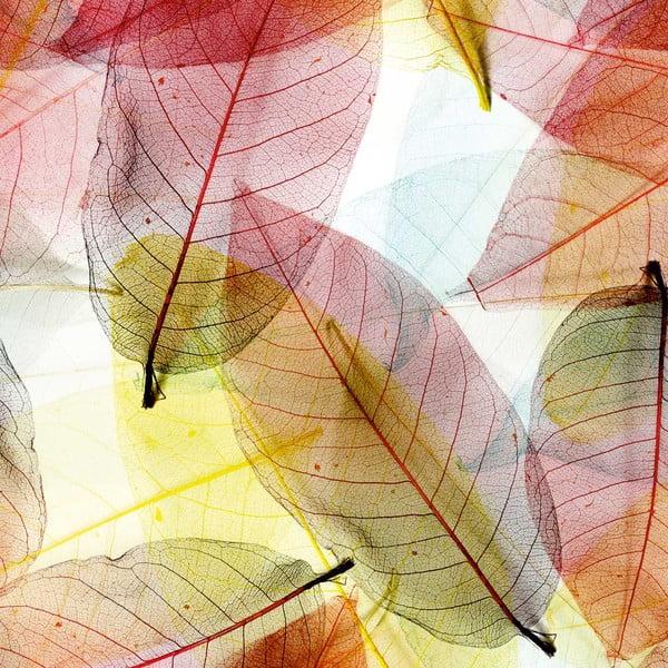 Obraz Priehľadné lístie, 60x60 cm