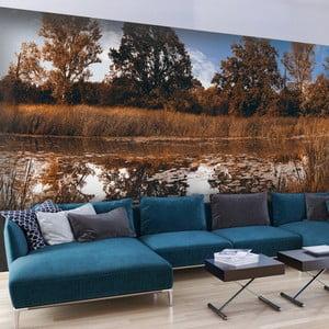 Veľkoformátová tapeta Artgeist Autumn Reeds, 300x210cm