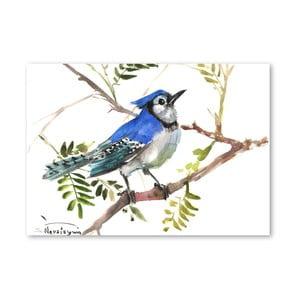 Autorský plagát Blue Jay Wide od Surena Nersisyana, 60 x 42 cm