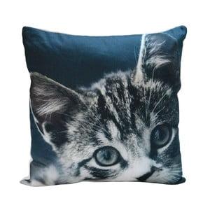 Vankúš Blue Kitty, 45x45 cm