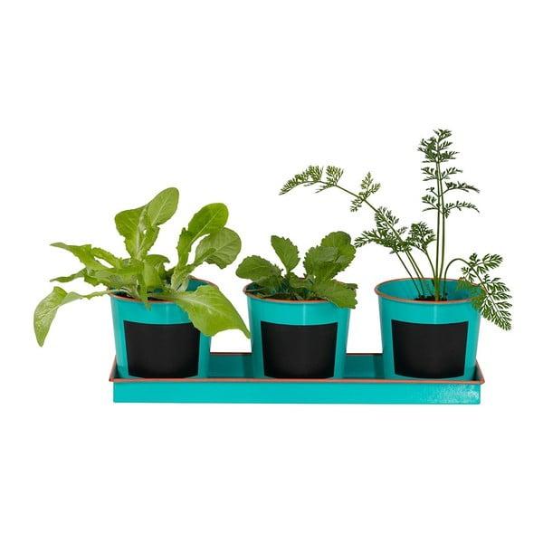 Sada 3ks kvetináčov a sadeničiek Plant Pots & Seed