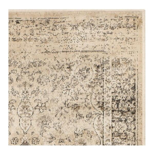 Koberec Safavieh Sasha, 66x243 cm