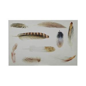 Ceduľa Feather, 40x60
