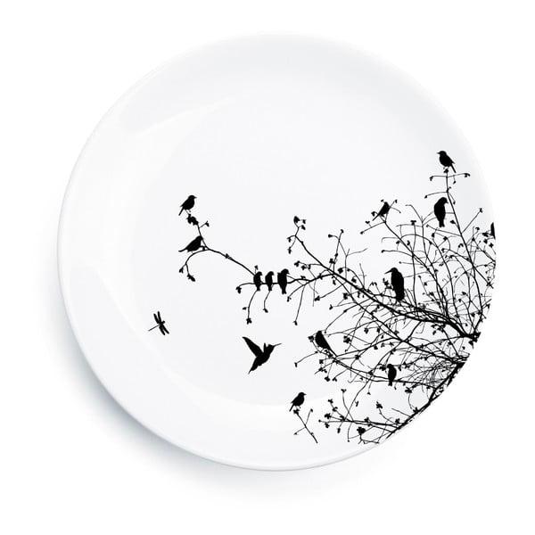 Tanier Primavera II, 25 cm