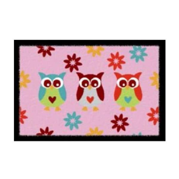 Rohožka Pink Owls, 40x60 cm