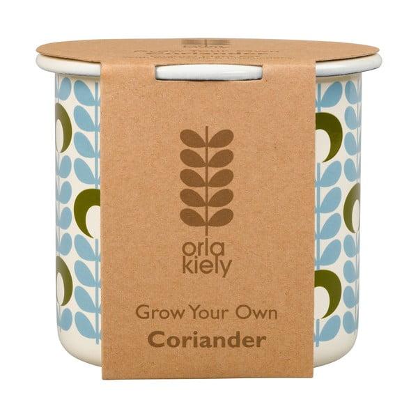 Sada kvetináča so semienkami koriandra Orla Kiely Grow Your Own