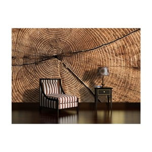 Veľkoformátová nástenná tapeta Vavex Wooden Years, 416×254 cm
