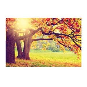 Obraz Jesenná scenéria, 45x70 cm
