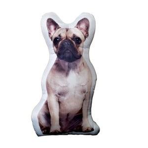 Vankúšik Adorable Cushions francúzsky buldoček