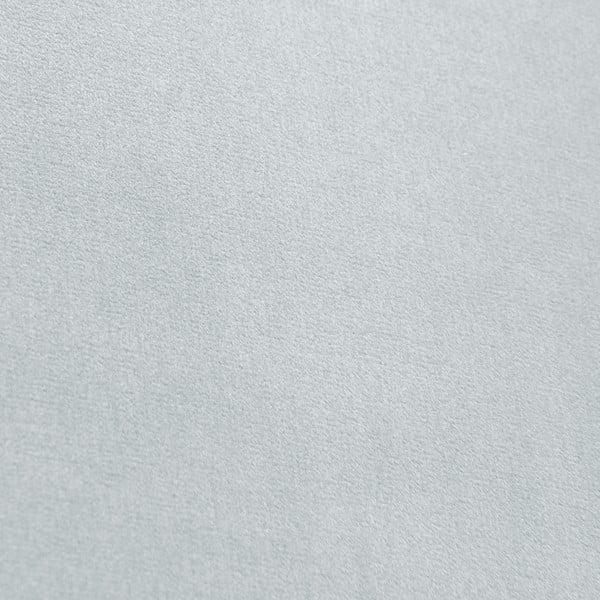 Modrosivá leňoška Vivonita Nellie