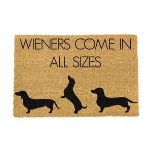 Rohožka Artsy Doormats Weiners Come In All Sizes, 40×60 cm