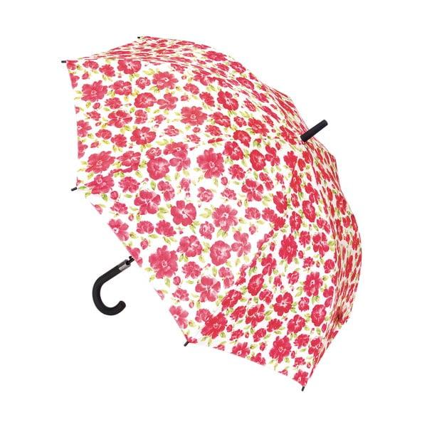 Dáždnik Cressida