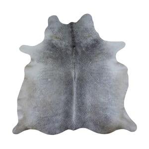 Sivý koberec z hovädzej kože, 260 x 175 cm