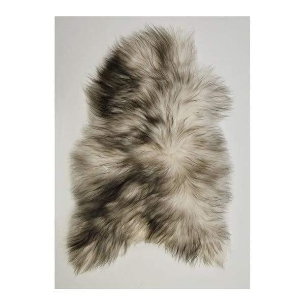Svetlá ovčia kožušina s dlhým vlasom Dark tops, 100 x 60 cm