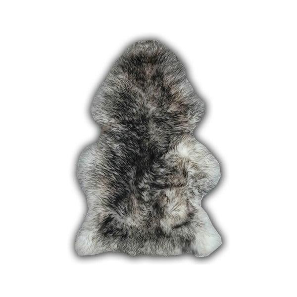 Sivá ovčia kožušina Pipsa Mouton, 110×80cm