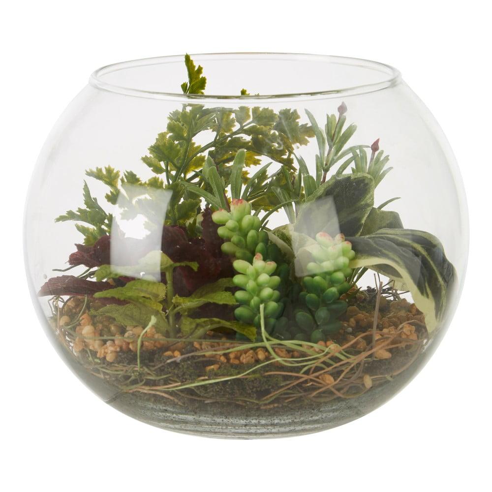 Umelý sukulent v sklenenom kvetináči Premier Housewares Fiori Sucu