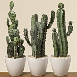 Sada 3 dekoratívnych kaktusov s kvetináčom Boltze Tusca
