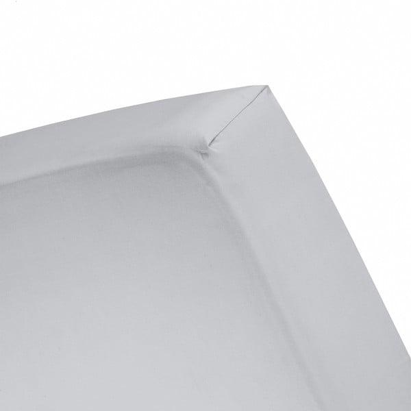 Plachta Cinderella Grey, 80x200 cm