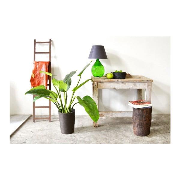 Palmový kvetináč Black Pot