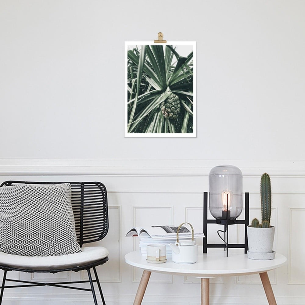 plag t hf living botanic palm 30 40 cm bonami. Black Bedroom Furniture Sets. Home Design Ideas