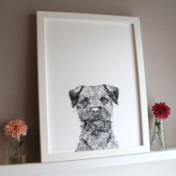 Plagát Baxter The Border Terrier, 30x40 cm