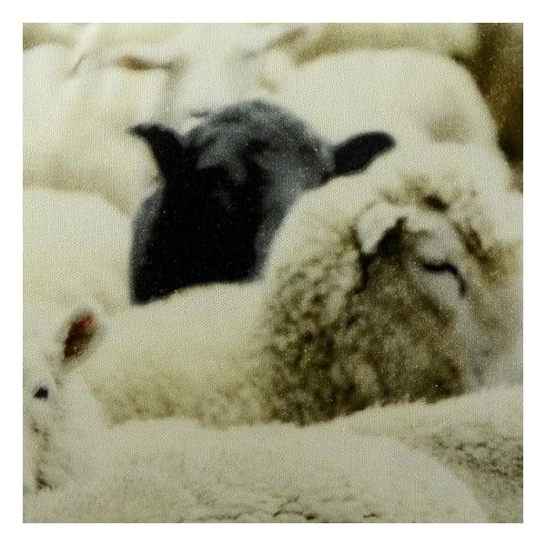 Vankúš Sheep Black 60x40 cm