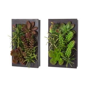 Sada 2 závesných dekorácií v tvare rastúceho kaktusu Unimasa