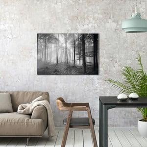 Sklenený obraz OrangeWallz Black Forest, 60 x 90 cm
