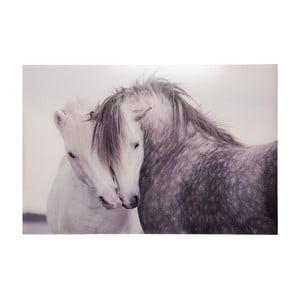 Sklenený obraz Horses, 80x120 cm