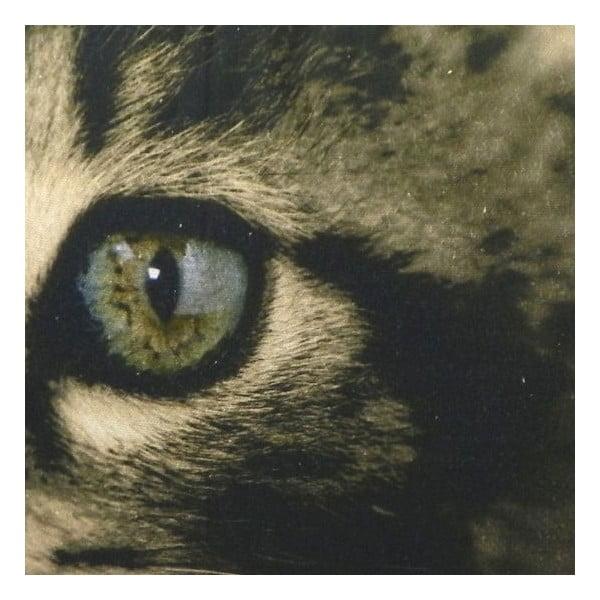 Vankúš Kitten Green Eyes 50x35 cm