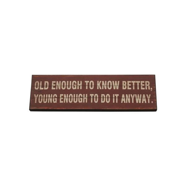 Závesná ceduľa  Old Enough To Know, 40x12 cm
