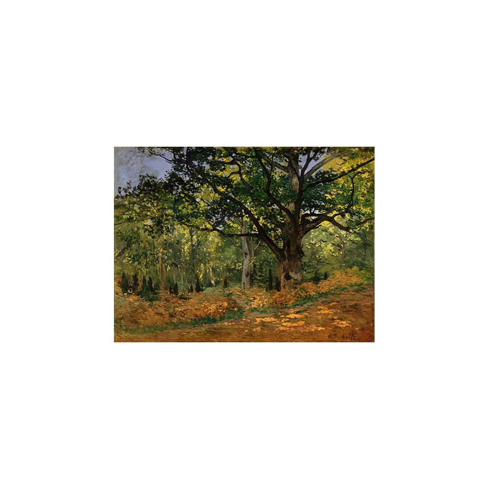 Reprodukcia obrazu Claude Monet - The Bodmer Oak, Fontainebleau Forest, 70 × 50 cm