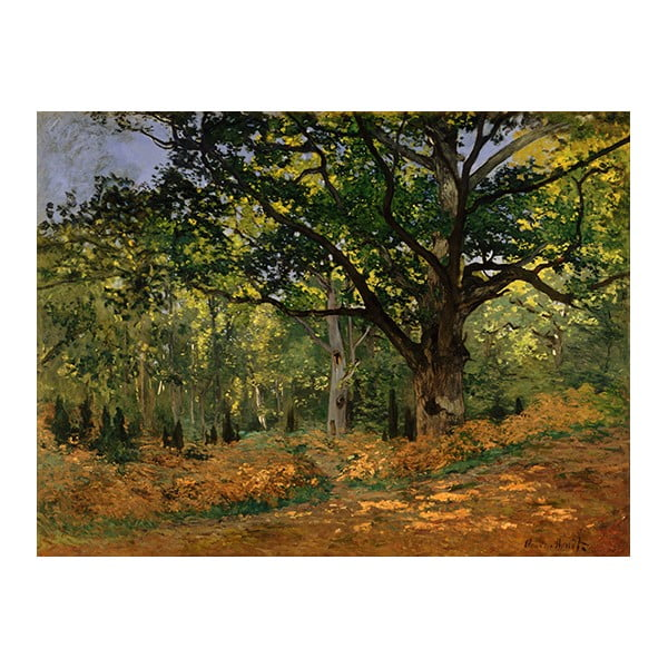 Obraz Claude Monet - The Bodmer Oak, Fontainebleau Forest, 70x50 cm