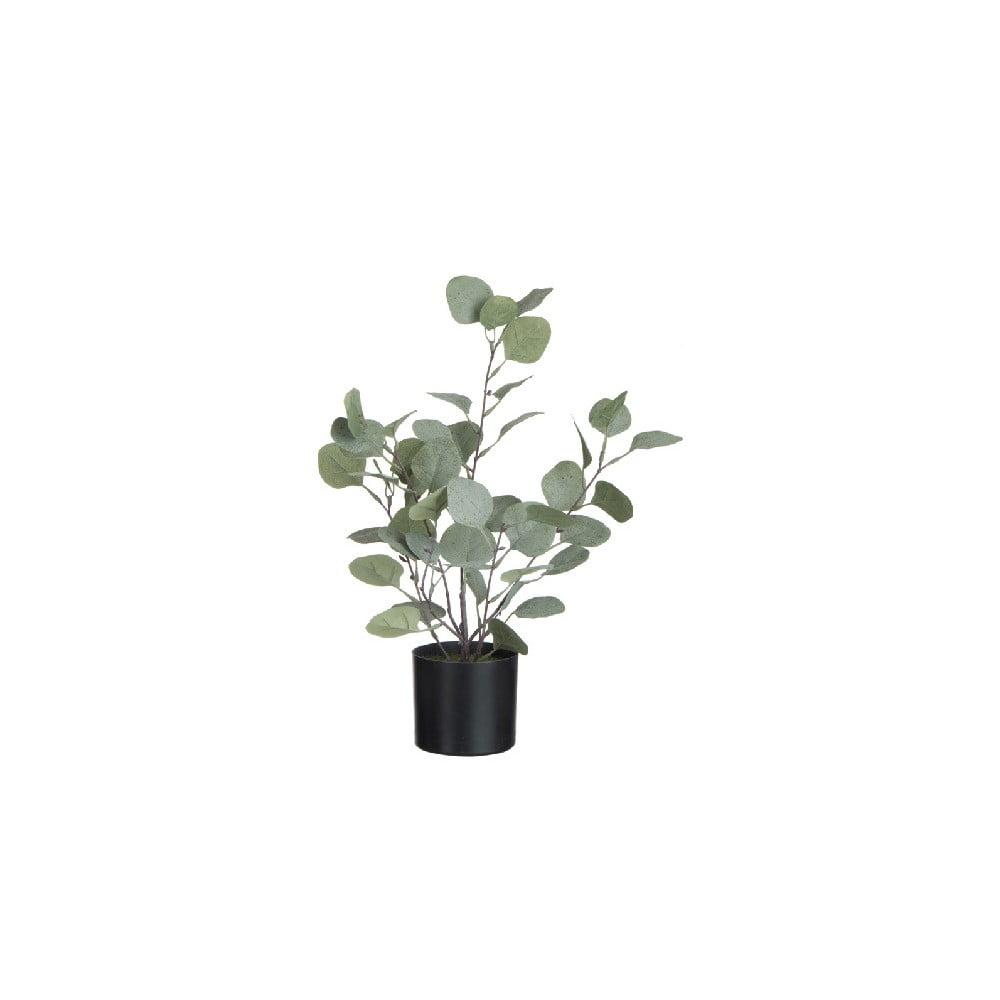 Umelá dekoratívna rastlina v kvetináči J-Line Eucalyptus