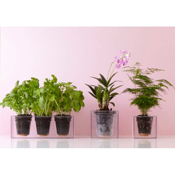 Samozavlažovací kvetináč Cube, mini