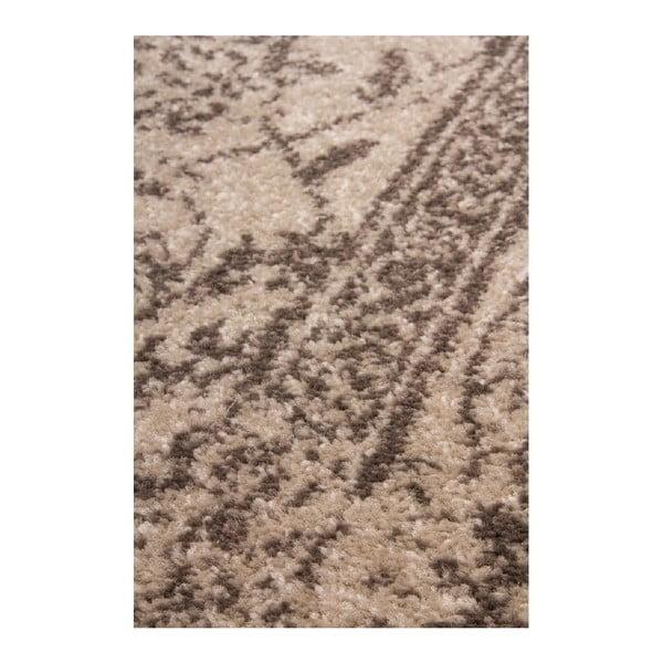 Koberec Appia 401 Cream, 170x120 cm