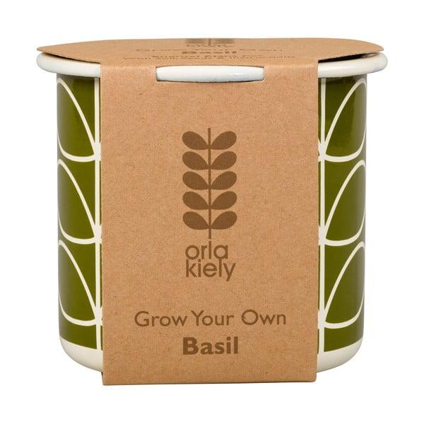 Sada kvetináča so semienkami bazalky Orla Kiely Grow Your Own