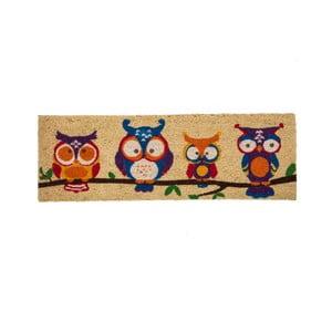 Rohožka pred dvere z kokosového vlákna Unimasa Owls