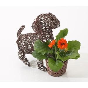 Dekoratívny ratanový kvetináč Dog and Plant