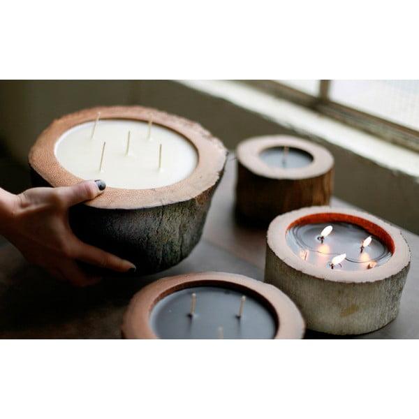 Palmová sviečka Legno Ebony s vôňou včelieho medu, 100 hodín horenia