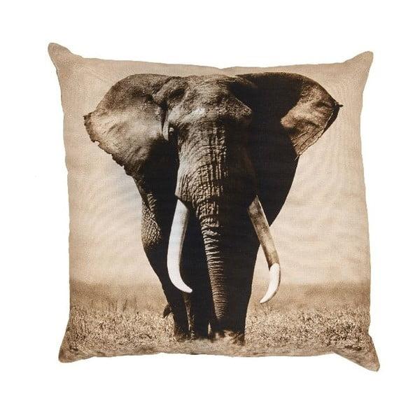 Vankúš Elefante, 50x50 cm