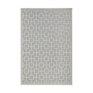Koberec vhodný do exteriéru Botany 115x165 cm, sivý