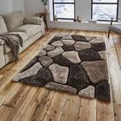 Béžovo-hnedý koberec Think Rugs Noble House, 120×170cm