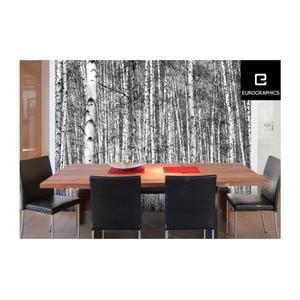 Veľkoformátová tapeta Eurographics Birch Forest