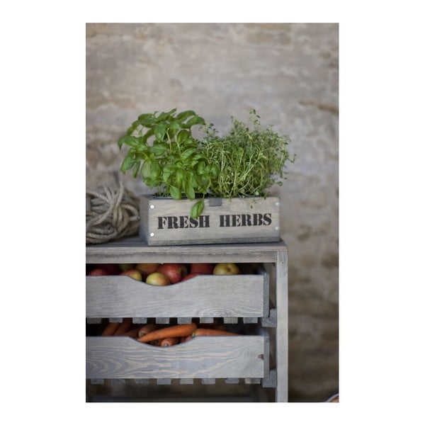 Sada 2 kvetináčov Fresh Herbs