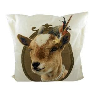 Vankúš Alm Goat 50x50 cm
